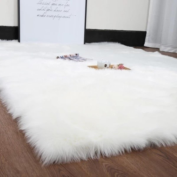 shaggy rug carpet