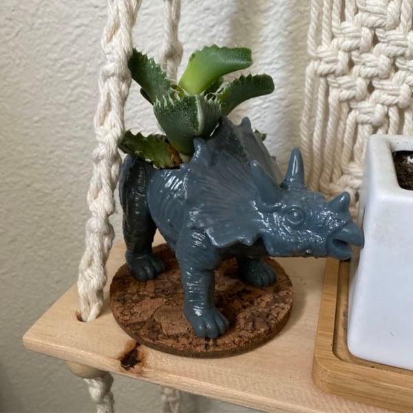 dinosaur-planter