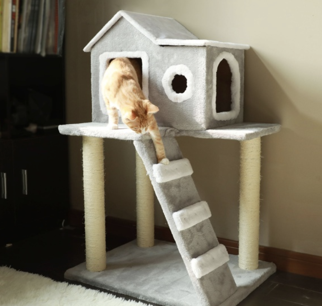 Cat Furniture Wish App