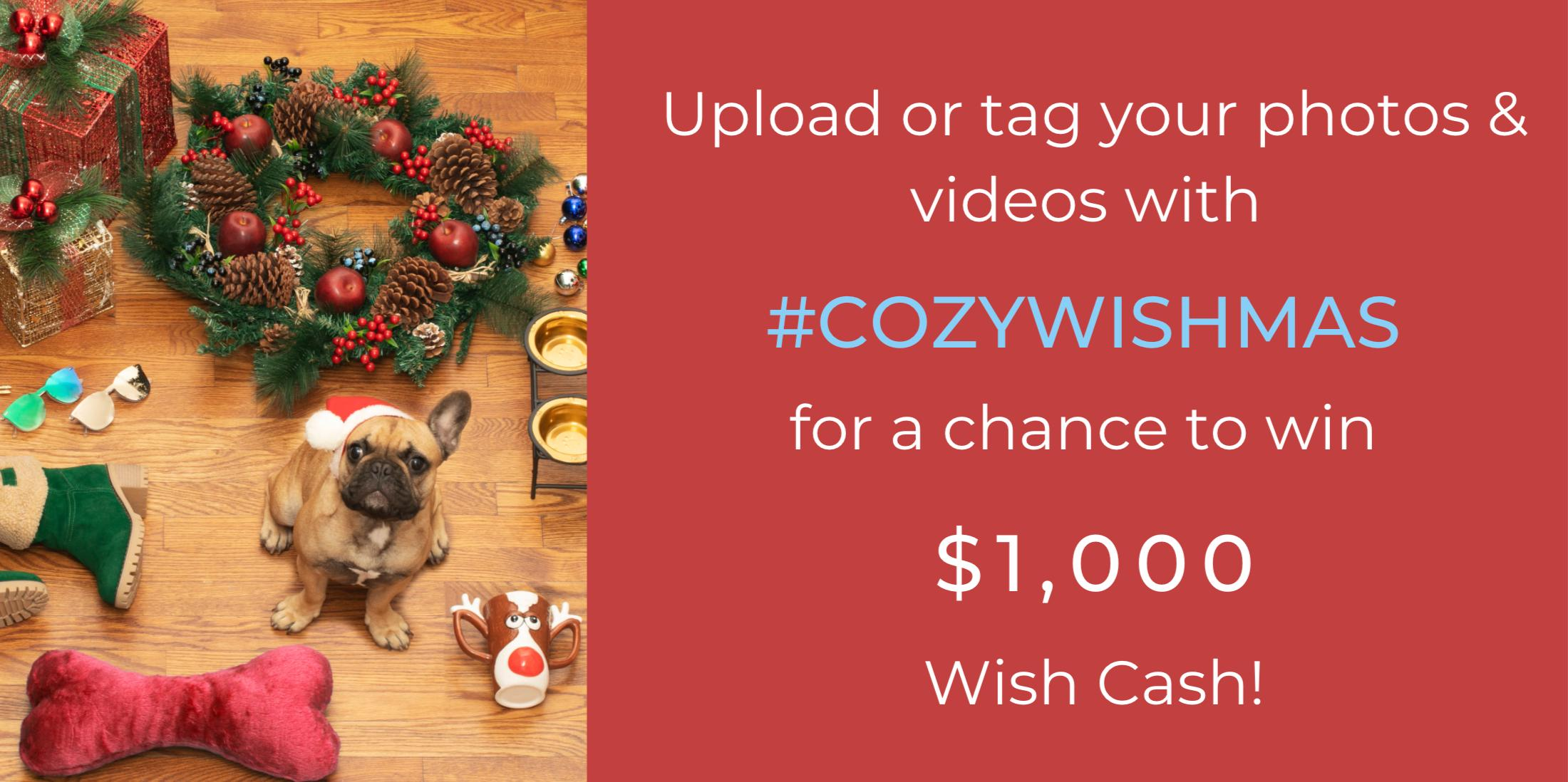 cozy-wishmas-contest-rules