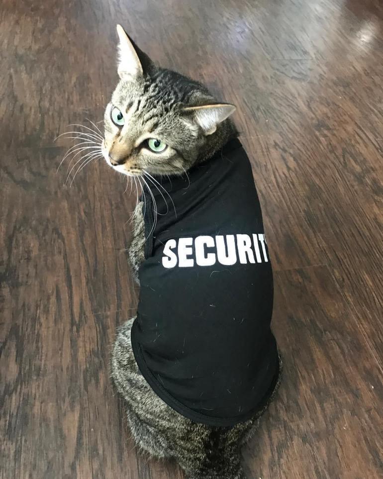 Security Costume