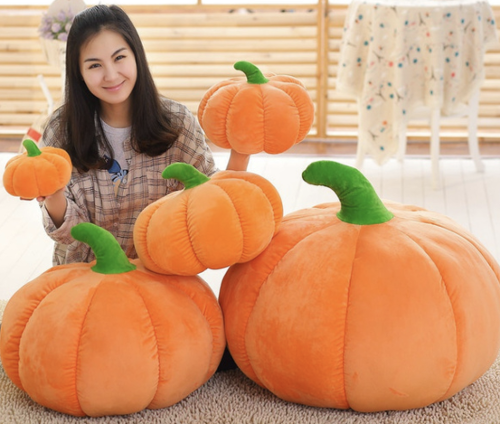 Anything and Everything Pumpkin 🎃 You've Ever Needed from Wish